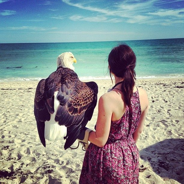 Jules and Challenger the Eagle on the Beach